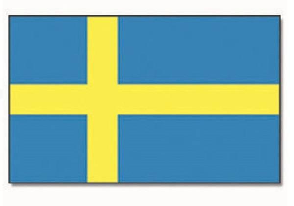 Bilde av Flagg, Sverige - 90x150cm
